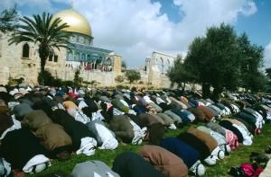 3/1982. Moslem prayers on the Temple Mount,Jerusalem               Dome of the Rock in back Neg.# 1/1730